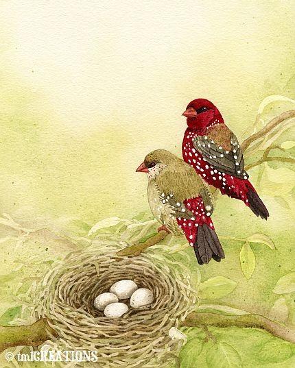 i love birds - tracylizottestudios