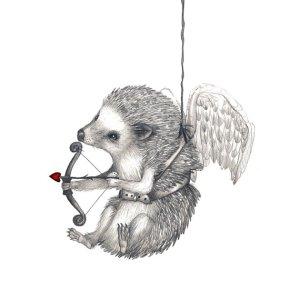 hansmyhedgehog