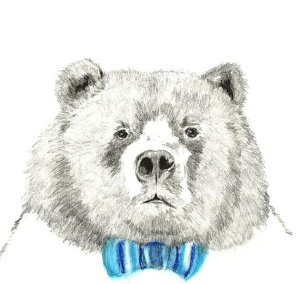 corelladesign - mr-bear